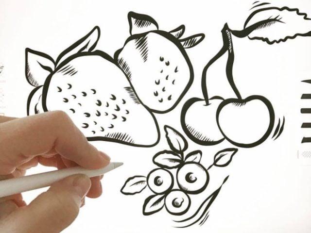 primaten-uppsala-maja-larsson-illustrator-grafiskt-material
